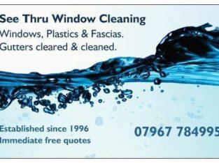 Windows, Facias & Gutters Cleaning Service