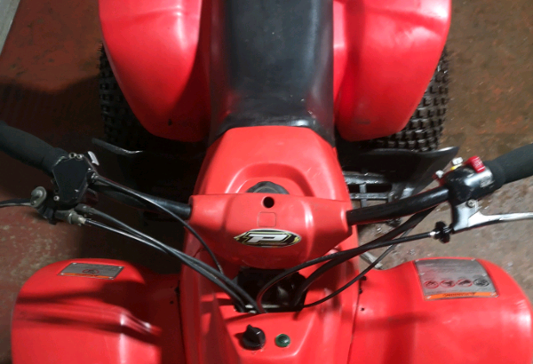 Quadzilla 250cc quad.