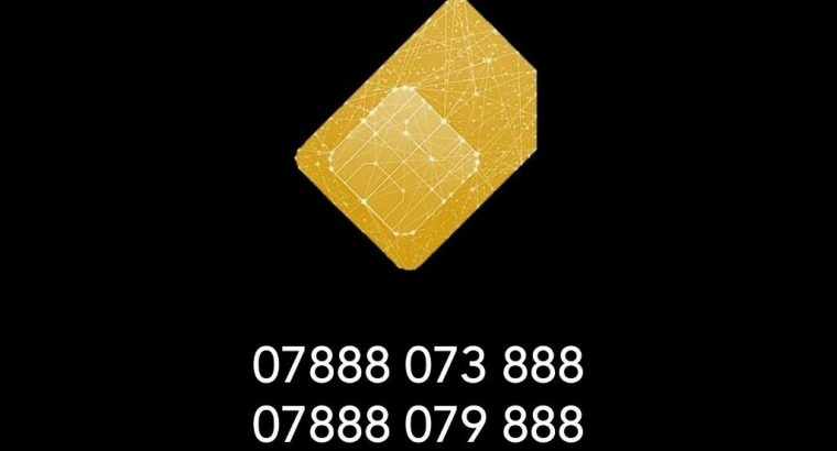 Buy Gold VIP Memorable Mobile Numbers, 650 numbers available