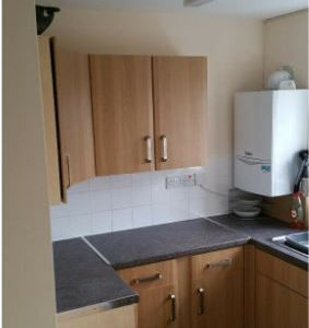 SWAP – COUNCIL PROPERTY – 1 BED GARDEN FLAT SWAP FOR BIG COUNCIL HOUSE