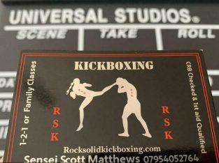 On Line kickboxing marital arts training & fitness – huge reputation – 1-2-1 live cam