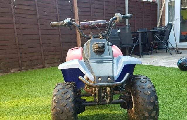 Petrol quad bike