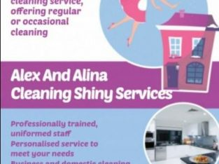 HOUSE CLEANING SERVICES ALEX AND ALINA LIMITED
