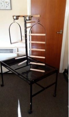 Parrot stand free for collection