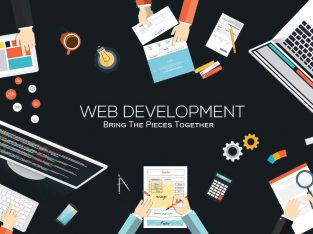 Professional website designing and developent services