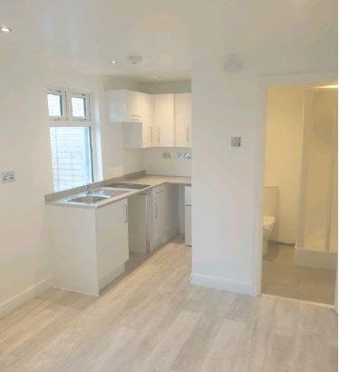 Studio Flat In Croydon Bromley West Wickham Area
