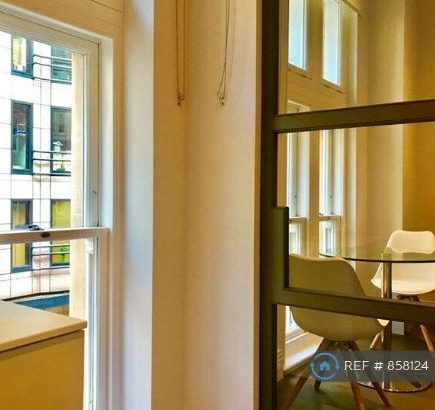 1 bedroom flat in Chancery Lane, London, WC2A (1 bed) (#858124)