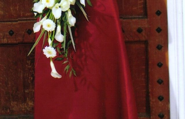 Wedding/Bridesmaid/Ball Gown – burgundy colour £30 ovno