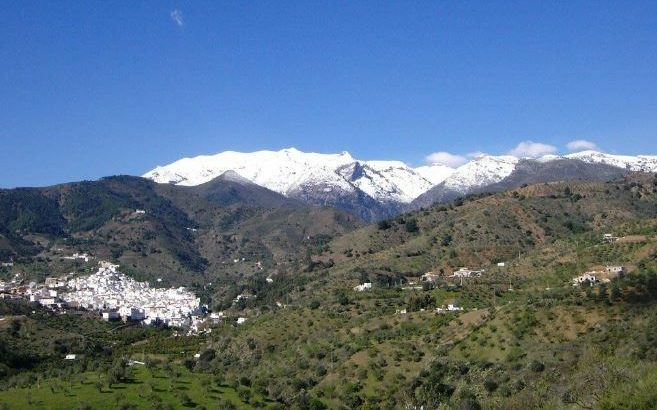 Plot of Land and Build for Sale – Tolox, Malaga