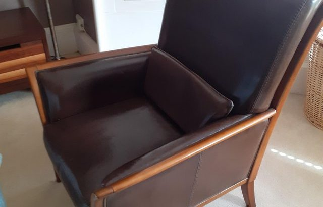 Leather Horsehair chair