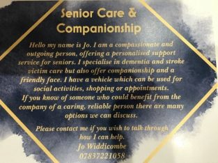 Companion/ carer /cleaner available various hours