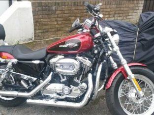 Harley-Davidson, SPORTSTER XL1200C