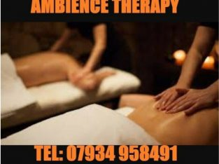 two female Massage Therapist – Swedish, Deep Tish tissue and Relaxing massage