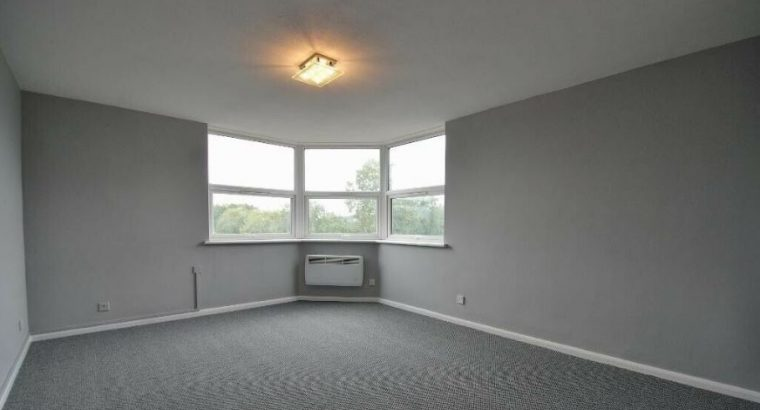 1 bedroom flat in Hanwell very Spacious and roomy