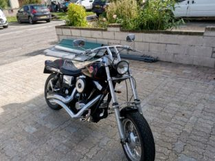 FXDWG Harley Davidson for sale