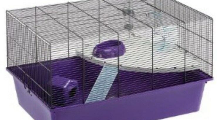 Cage for Hamster for sale